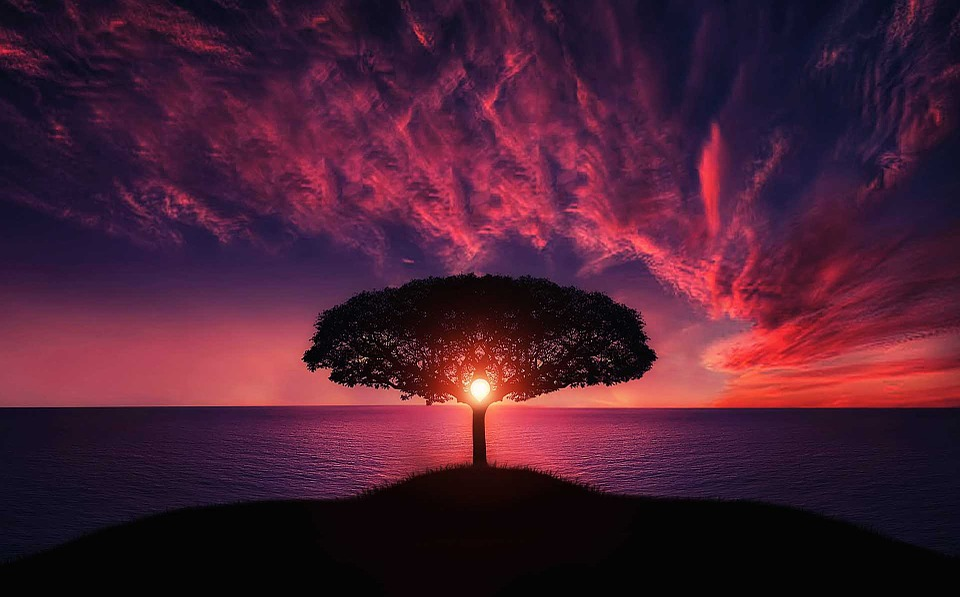 True Meditation & the Most Efficient Methods