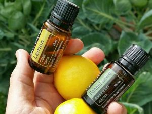 Lemon Essential Oil and Your Health